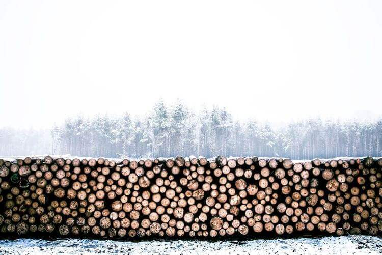 Logging Strategies